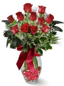 9 adet gül  Ordu çiçekçi mağazası  kirmizi gül