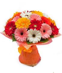 Renkli gerbera buketi  Ordu uluslararası çiçek gönderme