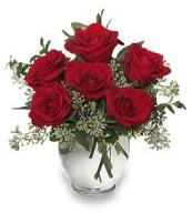 Vazo içerisinde 5 adet kırmızı gül  Ordu ucuz çiçek gönder