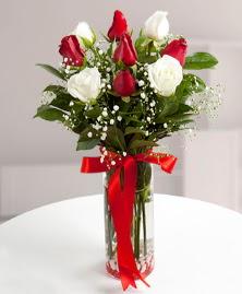 5 kırmızı 4 beyaz gül vazoda  Ordu online çiçek gönderme sipariş