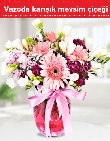 Vazoda karışık mevsim çiçeği  Ordu çiçekçi telefonları