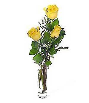 Ordu internetten çiçek satışı  3 adet kalite cam yada mika vazo gül