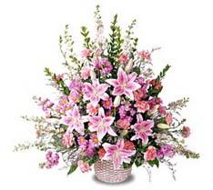 Ordu hediye çiçek yolla  Tanzim mevsim çiçeklerinden çiçek modeli