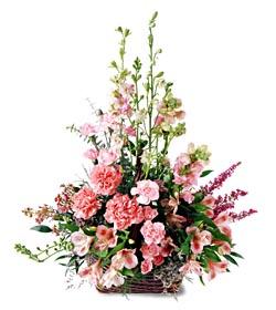 Ordu çiçek satışı  mevsim çiçeklerinden özel
