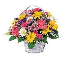 Ordu çiçekçi telefonları  mevsim çiçekleri sepeti özel