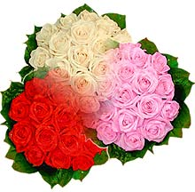 3 renkte gül seven sever   Ordu çiçekçi telefonları
