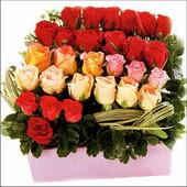 15 adet renkli gül ve cam   Ordu ucuz çiçek gönder