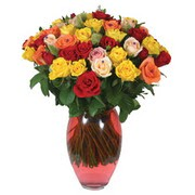 51 adet gül ve kaliteli vazo   Ordu çiçek yolla , çiçek gönder , çiçekçi