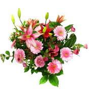 lilyum ve gerbera çiçekleri - çiçek seçimi -  Ordu çiçek gönderme sitemiz güvenlidir