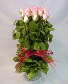 13 adet pembe gül silindirde   Ordu İnternetten çiçek siparişi