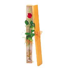 ince  kutuda  1  gül   Ordu İnternetten çiçek siparişi