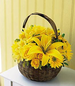 sepet içerisinde sarinin sihri  Ordu online çiçek gönderme sipariş