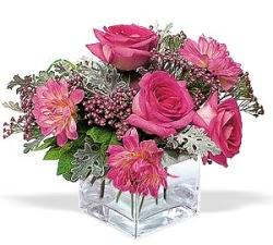 Ordu online çiçek gönderme sipariş  cam içerisinde 5 gül 7 gerbera çiçegi