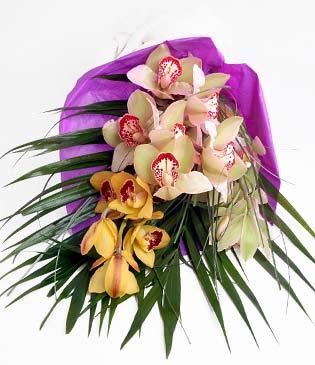 Ordu online çiçek gönderme sipariş  1 adet dal orkide buket halinde sunulmakta