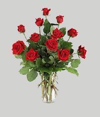 Ordu online çiçek gönderme sipariş  11 adet kirmizi gül vazo halinde