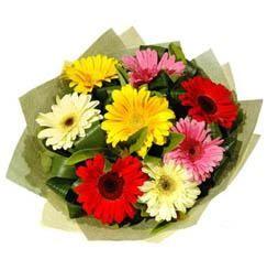 9 adet karisik gerbera demeti  Ordu çiçek online çiçek siparişi