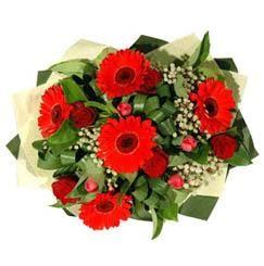 Ordu çiçek satışı   5 adet kirmizi gül 5 adet gerbera demeti