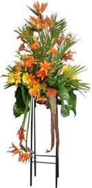 Ordu hediye çiçek yolla  perförje tanzimi dügün nikah ve açilislara