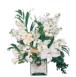 Ordu internetten çiçek satışı  sadece beyazlardan olusmus mevsim cam yada mika tanzim