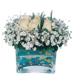Ordu ucuz çiçek gönder  mika yada cam içerisinde 7 adet beyaz gül
