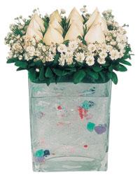 Ordu ucuz çiçek gönder  7 adet beyaz gül cam yada mika vazo tanzim