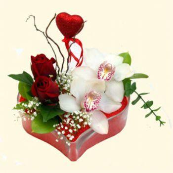 Ordu 14 şubat sevgililer günü çiçek  1 kandil orkide 5 adet kirmizi gül mika kalp