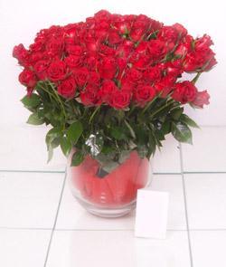 Ordu çiçek siparişi vermek  101 adet kirmizi gül