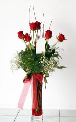 Ordu online çiçek gönderme sipariş  6 adet kirmizi gül ve cam yada mika vazo