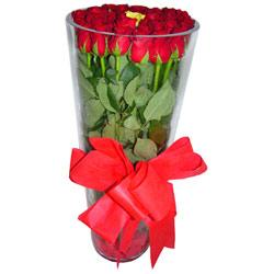 Ordu anneler günü çiçek yolla  12 adet kirmizi gül cam yada mika vazo tanzim