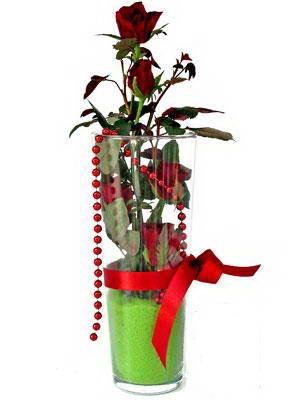 Ordu internetten çiçek siparişi  Cam yada mika içerisinde 9 adet kirmizi gül - sevdiklerinize özel