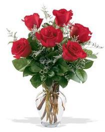 Ordu çiçek yolla , çiçek gönder , çiçekçi   7 adet kirmizi gül cam yada mika vazoda sevenlere