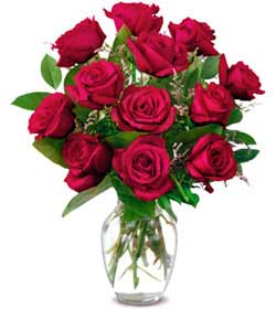 Ordu internetten çiçek siparişi  1 düzine kirmizi gül sevenlere özel vazo gülleri