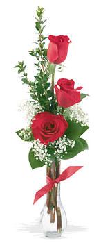 Ordu online çiçek gönderme sipariş  mika yada cam vazoda 3 adet kirmizi gül