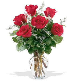 Ordu online çiçek gönderme sipariş  cam yada mika vazoda 6 adet kirmizi gül