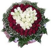 Ordu çiçek online çiçek siparişi  27 adet kirmizi ve beyaz gül sepet içinde