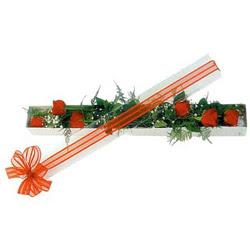 Ordu hediye çiçek yolla  6 adet kirmizi gül kutu içerisinde