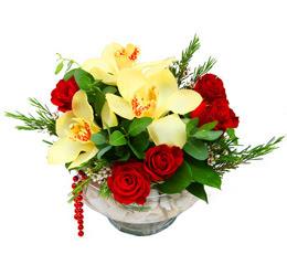 Ordu çiçek gönderme sitemiz güvenlidir  1 adet orkide 5 adet gül cam yada mikada