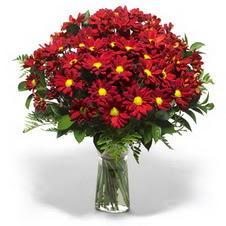 Ordu İnternetten çiçek siparişi  Kir çiçekleri cam yada mika vazo içinde