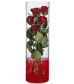 cam içerisinde 7 adet kirmizi gül  Ordu çiçek siparişi sitesi