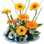 camda gerbera ve mis kokulu kir çiçekleri  Ordu çiçek yolla