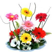 Ordu çiçek , çiçekçi , çiçekçilik  camda gerbera ve mis kokulu kir çiçekleri