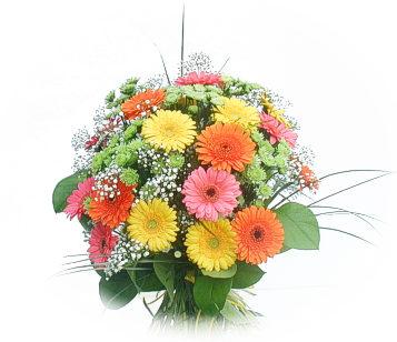 13 adet gerbera çiçegi buketi  Ordu internetten çiçek siparişi