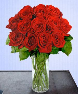 Anneme 12 adet cam içerisinde kirmizi gül  Ordu hediye çiçek yolla