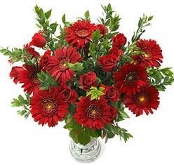 5 adet kirmizi gül 5 adet gerbera aranjmani  Ordu çiçek , çiçekçi , çiçekçilik