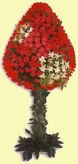Ordu çiçek gönderme sitemiz güvenlidir  dügün açilis çiçekleri  Ordu anneler günü çiçek yolla