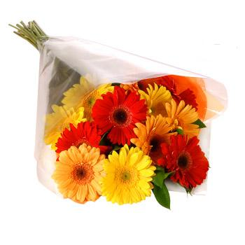 Karisik renklerde gerbera buketi  Ordu online çiçek gönderme sipariş