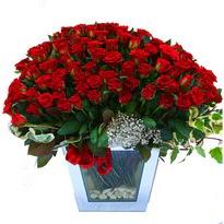Ordu çiçek siparişi sitesi   101 adet kirmizi gül aranjmani