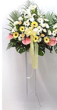 Ordu internetten çiçek siparişi   perförje çiçegi dügün çiçekleri