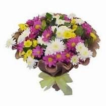 Ordu çiçek yolla  Mevsim kir çiçegi demeti