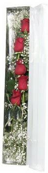 Ordu hediye çiçek yolla   5 adet gülden kutu güller
